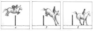 equestrian blog post.jpg