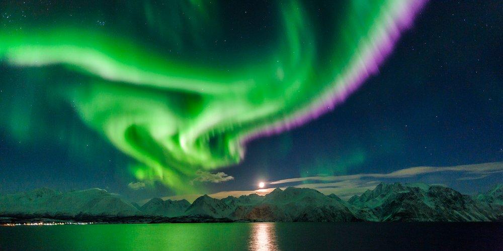 northern_lights_lyngenfjord_northern_norway_nav_d3ffe4a3-bde9-4ffa-8a1c-a42b84c60681.thumb.jpg.78bfecba7de158cddf8cd02d6de17a30.jpg